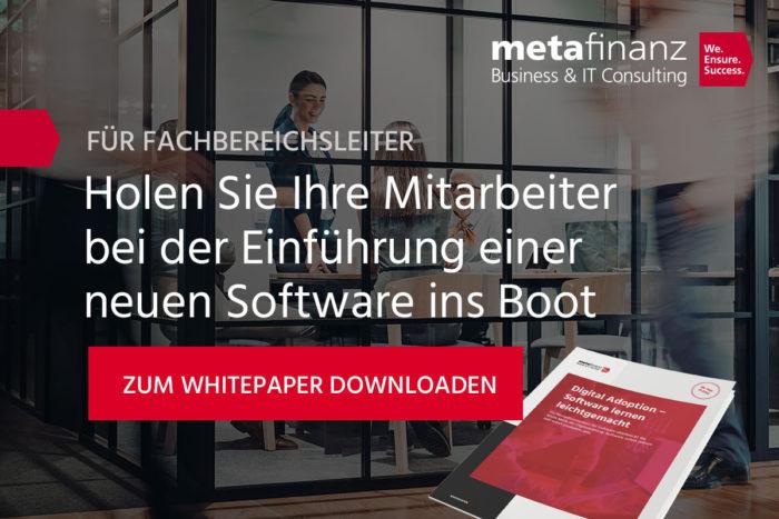 2012008-metafinanz-banner-kampagnenbeitrag-Rollout-Success-Factors
